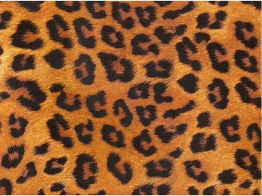 Leopard Chintz 200 mm x 200 mm
