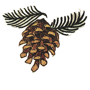 Pine Cone - Large - 70 mm - Set of 2