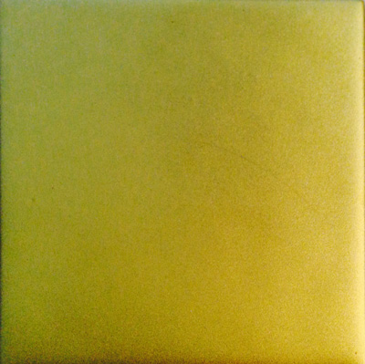 Profusion Satin Shimmer - Gold Black Backed 5cm x 5cm