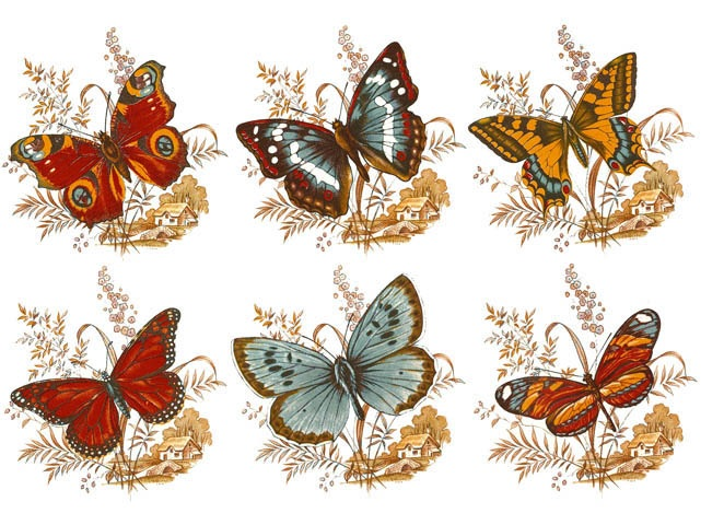 Butterflies in Flight 70 mm x 65 mm- Set of 6