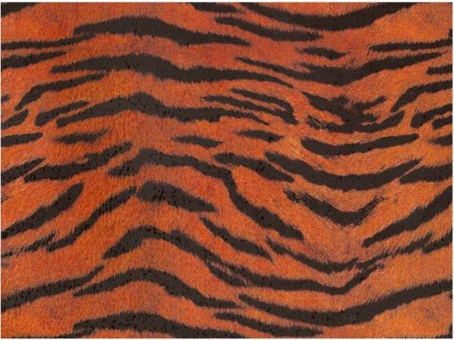 Tiger Chintz 200 mm x 200 mm