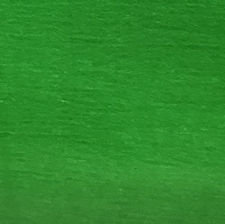 Garden Green Transparent (Handy Sheet 260mm x 260mm)